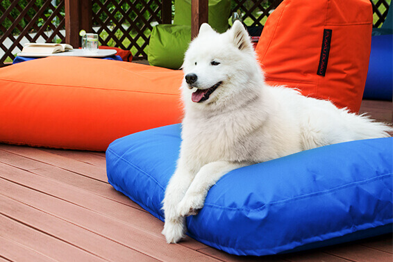 How to choose a bean bag for outdoors?